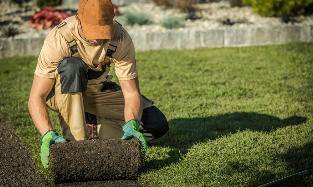 No Win No Fee Making a Claim if You Have Been Injured Onsite While Landscaping Blog Image